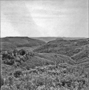 guarapuava 200 anos 1870